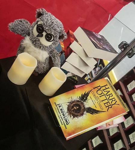 Encontro-Harry-Potter-Saraiva-Rio-Preto-20.jpg
