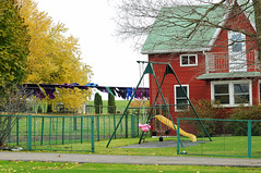 Laundry Day (thepoocher7) Tags: architecture redtinhouse greentinroof tinroof house mennonites mennoitehome hawkeville ontario canada hff fence greenfence baretree fall autumn changingleaves laundry wash clothes line blowinginthewind windy clothesline dryingclothes swingset slide yard rural countryscene