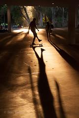 Skate na marquise do Ibirapuera (Ivan Costa) Tags: ibirapuera skate sport esporte parque park sp sao paulo shadows sombras