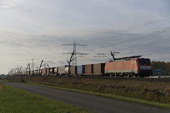 DB Cargo 189 025-0 met containertrein op weg richting Emmerich over de Betuweroute bij Angeren 30-10-2016 (marcelwijers) Tags: db cargo 189 0250 met containertrein op weg richting emmerich over de betuweroute bij angeren 30102016 025 betuwe route bemmel siemens railway railways eisenbahn spoorwegen netherlands niederlande nederland