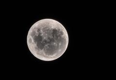 Super Lua (soares.rodrigo@ymail.com) Tags: lua luar moon rodrigo soares super anoitecer sãojosédoriopreto