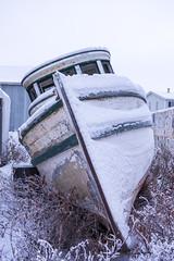 Left Behind Again (Shane Sadoway) Tags: stanton boat tuk tuktoyaktuk northwest territories ship wooden old abandoned rotting prow green white beached