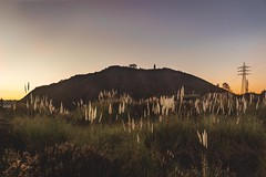 (Irene Ziel Photography) Tags: contraluz montaa sunset airelibre paisaje landscape outdoors atardecer gijn camocha asturias spain espaa canon tamron canonflickraward