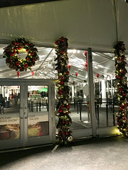 HTS-2 (Peter Parides) Tags: unitedstates christmas trains newyorkbotanicalgardens new york city newyork