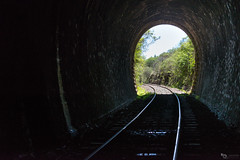 Going out of the tunnel (Picardo2009) Tags: baadoderocha tacuarembo uruguay rails traintunnel tunel tunnel vias travel picoftheday train