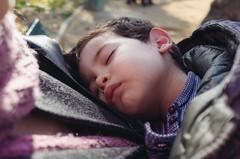 (victortsu) Tags: cosimo sieste victortsu ricohgr ricohgrii stephanie