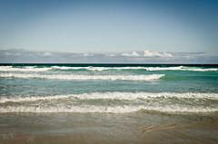 Le Pacifique à Tortuga Bay, Galápagos (WhiteFlowersFade) Tags: équateur ecuador travel voyage nikon d7000 d7k galapagos beach plage océan ocean pacifique pacific bluesky cielbleu water eau santacruz indefatigableisland tortugabay galápagos
