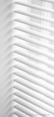 _C0A6560REWS Light Management II,  Jon Perry, 26-11-16 zaw (Jon Perry - Enlightenshade) Tags: blackandwhite bw jonperry enlightenshade arranginglightcom 261116 20161126 blinds lines light horizontal control manage venetianblinds