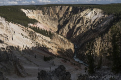 "Grand Canyon of the Yellowstone • <a style=""font-size:0.8em;"" href=""http://www.flickr.com/photos/63501323@N07/31193481015/"" target=""_blank"">View on Flickr</a>"