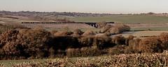 Grinding uphill (Peter Leigh50) Tags: ews dbs steel train viaduct uppingham rutland