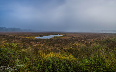 Niebla en El Rompido (Dancodan) Tags: nikon d7100 panoramica nikkor1024mmf3545gdxswmedifasphericalafs andaluca espaa elrompido huelva paisajes niebla cielo amanecer angular nubes marismas fb 500px