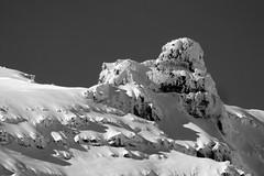 ART_9362bw (MILESI FEDERICO) Tags: milesi milesifederico montagna montagne alpi altavallesusa alpicozie altavaldisusa visitpiedmont valsusa valdisusa valliolimpiche valledisusa nikon nikond7100 nital natura nature sigma150500 sigma piemonte piedmont paesaggio neve nat wild landscape snow europa europe autunno italy italia iamnikon inmontagna novembre 2016 d7100 dettagli dettaglio detail details