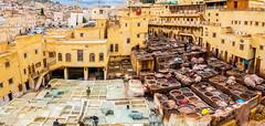 Chouara Tannery (lemien) Tags: africa fes morocco fs fsmekns ma