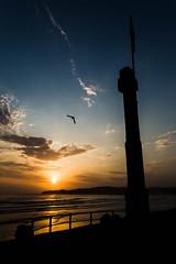 """Cada """"Each"""" (Dibus y Deabus) Tags: gijon asturias españa sapin cielo sky nubes clouds amanecer dawn contraluz backlight canon 6d playadesanlorenzo tamron"""
