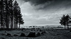 Soussons Cairn Circle B&W ... (Go placidly amidst the noise and haste...) Tags: soussonscairncircle mono blackandwhite dartmoor devon neolithic southwest westcountry prehistoric burial