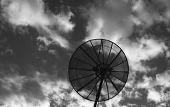 (rafalweb (moved)) Tags: film grain bw black white blackandwhite monochrome shapes circle circles sky canon rebelk2 caffenol ef 50mm f14