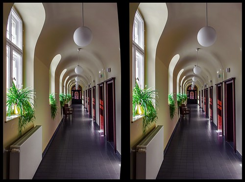 Bad Elster 3-D / Stereoscopy / Cross-Eye / HDR / Raw