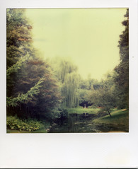 Dow Gardens (Jacob's Camera Closet) Tags: camera color film gardens project polaroid sx70 michigan instant sonar protection impossible dow