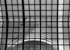 above.the.mall (jonathancastellino) Tags: leica mist toronto building tower up architecture mall square grid downtown squares moisture eatonscentre