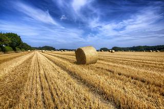 Harvest almost over (7 Shot HDR)