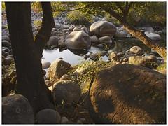 130906_Madrigal de la Vera_10 (ManuMartinlop) Tags: senderismo piedras cascada rutas potro finca extremadura higueras higos cauce lavera río madrigaldelavera cáceres montañas excursión gargantadealarcón picodealmanzor