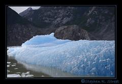 Iceberg at Sawyer Glacier8 (grizzman86) Tags: glacier iceberg tracyarm sawyerglacier