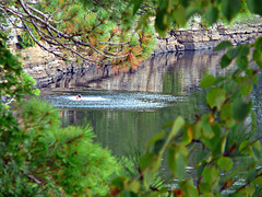 ledge jumping (paul millie) Tags: newyork swimming fun jumping rivers rockledges