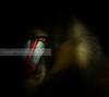 Punto de luz / Spot light (Daniel Hernanz Ramos) Tags: man eye face animals mouth mysterious contact mandrill mandril ferociousanimal animalspictures moodpictures danielhernanzfotografodemadrid animalsphoto ambientpictures copyrightdanihernanz fotografodeanimalsdanihernanz animaldetailpictures animalsfacetoface ambiancepictures pictureswithatmosphere animalreptil animalesmandrilgorila mandrilleyes mandrillmandrill eyesmandrill