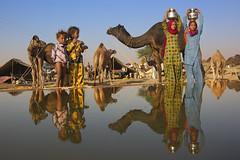 Pushkar Camel Fair in India (Bertrand Linet) Tags: red india girl fair camel pushkar rajasthan indiangirl camelfair pushkarcamelfair pushkarfair pushkarmela pushkarkamela indianmela indianfair rajasthangirl fairpushkar bertrandlinet melaindia rajasthanmela indiamela pushkarmella