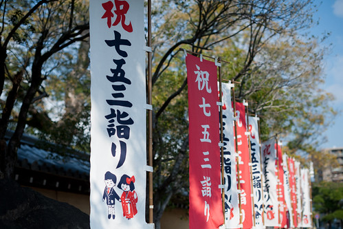 20131116_204  Nishinomiya Jinja-Shrine, Hyogo, JP