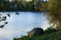 Anglers (*Gitpix*) Tags: park autumn trees light lake tree fall nature umbrella landscape see licht ast branch sony herbst natur lakeside fisher ufer landschaft bume baum anglers fishingrod angler schirm seeufer angelrute sonynex7 sonysel18551855mm