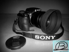 HX300 - Tribute (Brian de Leeuw) Tags: camera bridge bw blackwhite sony gimp cybershot tribute superzoom hx300 b4fotos