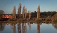 Keynsham-7-Poplar reflections (GordonJames) Tags: trees reflections river poplar avon floods keynsham canon5dmkii december2013