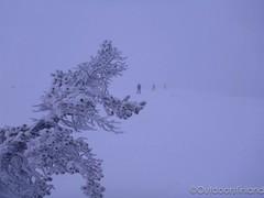 Kuertunturi fell, Lapland (outdoorsfinland) Tags: lapland snowshoeing lappi äkäslompolo kuertunturi lumikenkäily