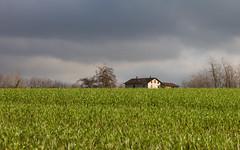 Winter 1.3 (casirfm) Tags: panorama canon landscape campagna 1855 dicembre brianza nationalgeographic 2013 besanainbrianza casirfm canoneos1100d eos1100d brianzashire