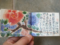 tiny book in box 7 (bettycat) Tags: trees hk colour art love book hand chinese craft made tiny poems