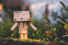 Finally got me a Danbo!! :D (*DollyLove*) Tags: cute canon bokeh 28 40mm danbo 70d