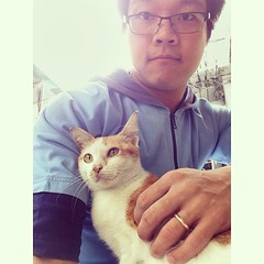 Selfie กับ ข้าวต้ม  #แมวน้อย #อ้อนสุดฤทธิ์ #selfie #ครั้งแรก