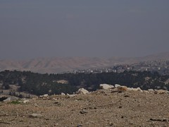 Bedouin Landscape (hiddentravel) Tags: israel palestine westbank bedouin integralexpeditions