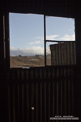 View From A Rusting Building (DMeadows) Tags: trees cold building abandoned ice broken window glass landscape scotland frozen rust iron frost view shed ruin rusty abandon frame waterside corrugated ruined ironworks patna dalmellington dunaskin davidmeadows dmeadows davidameadows dameadows