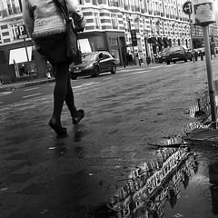Brussels Lace ¬ 9562 (Lieven SOETE) Tags: life street city winter light brussels people urban woman reflection water licht donna calle mujer eau wasser strada belgium lumière femme mulher ciudad menschen personas diagonal persone human stadt metropolis frau rue personnes carrer ville citta urbain 人 straat 女人 жена люди weiblich réflexion женщина девушка féminine γυναίκα femminile strase 2013 kadın 比利时 امرأة espacepublic женский महिला
