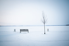 lonesome lake (almostsummersky) Tags: park winter lake snow tree ice wisconsin bench frozen horizon madison lakemendota jamesmadisonpark