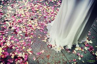 Bride Petals