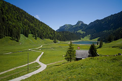 La Suisse existe  (Toni_V) Tags: lake nature landscape schweiz switzerland see europe suisse hiking 28mm rangefinder trail svizzera mountainlake bergsee appenzell wanderung m9 wanderweg alpstein 2014 svizra hoherkasten smtisersee elmaritm appenzellinnerrhoden messsucher 140607 toniv leicam9 l1016675