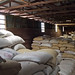 Bags of Coffee Beans #1