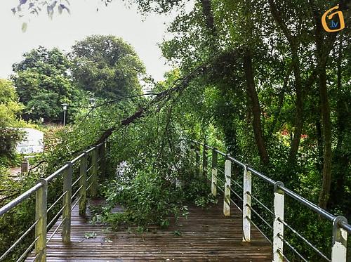 Ponte de acceso ao parque Ponte de Rosas