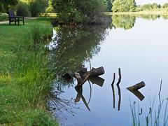 Stille / Silence (schreibtnix on' n off) Tags: park trees travelling nature reflections morninglight pond reisen frankreich europa europe natur teich bume spiegelungen morgenlicht olympuse5 lafertstaubin schreibtnix