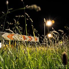 Getting signs in the dark - Night photography by Tomas Bloem (tomasBloem) Tags: road light grass sign licht weeds nikon utrecht traffic post roadsign gras bord amersfoort soest leusden onkruid