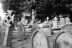 Graveyard. (curly42) Tags: graves graveyard stpeterschurch newnham gloucestershire tombstones