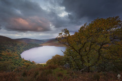 The Top of the Lake... (fearghal breathnach) Tags: loughtay wicklow sunset longexposure tree vista view stillness calm autumn forest trees clouds wicklowmountains wicklowway ireland wildnerness greatoutdoors